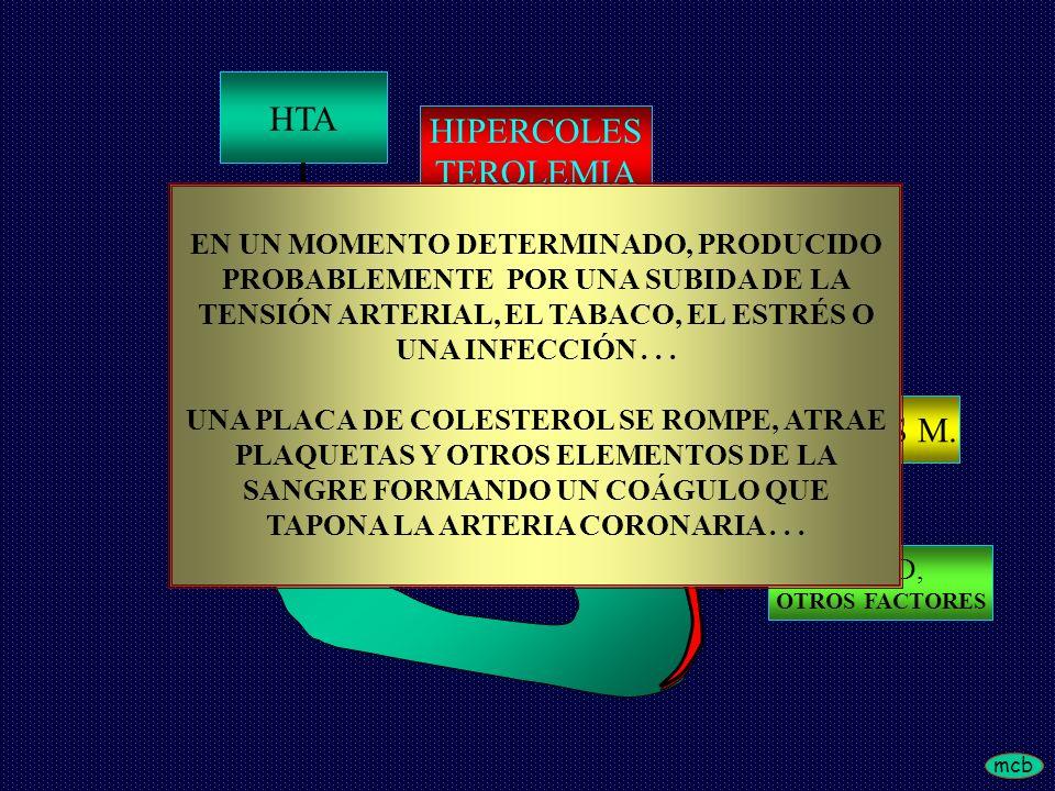 mcb HTA HIPERCOLES TEROLEMIA TABAQUISMO DIABETES M. EDAD, OTROS FACTORES EN UN MOMENTO DETERMINADO, PRODUCIDO PROBABLEMENTE POR UNA SUBIDA DE LA TENSI