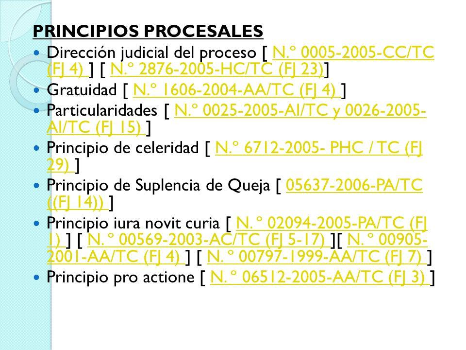 PRINCIPIOS PROCESALES Dirección judicial del proceso [ N.º 0005-2005-CC/TC (FJ 4) ] [ N.º 2876-2005-HC/TC (FJ 23)]N.º 0005-2005-CC/TC (FJ 4) N.º 2876-