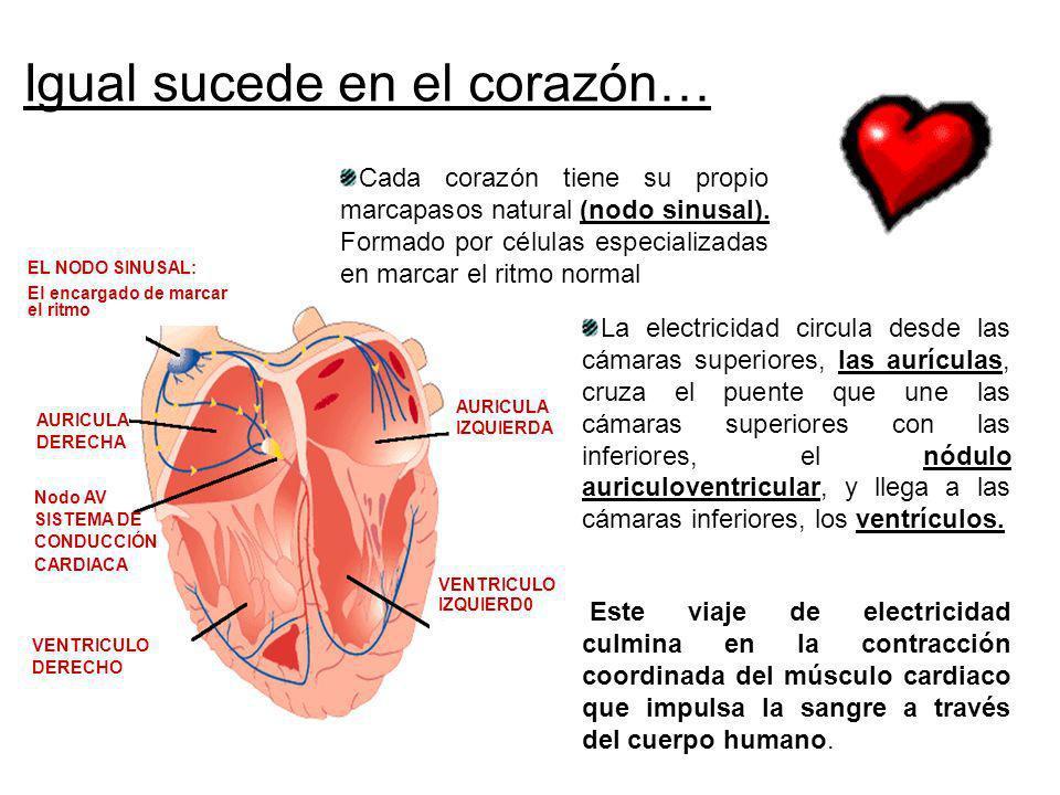 Igual sucede en el corazón… AURICULA IZQUIERDA VENTRICULO IZQUIERD0 VENTRICULO DERECHO AURICULA DERECHA La electricidad circula desde las cámaras supe