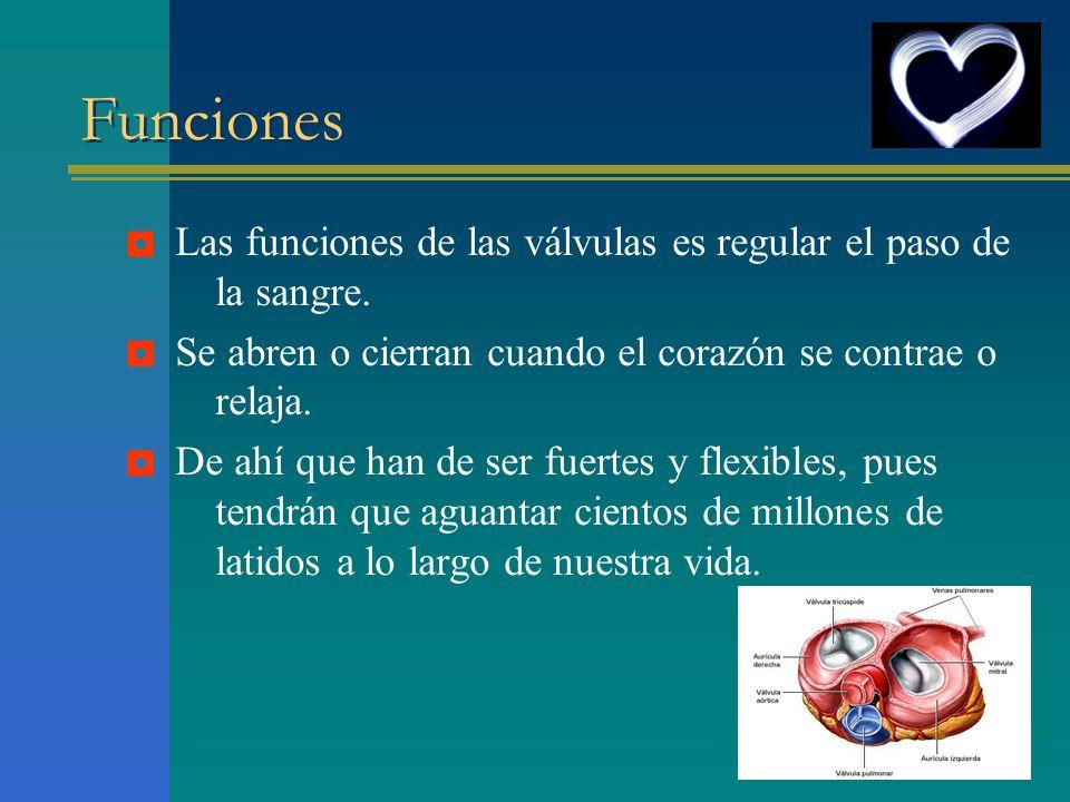 Funciones Las funciones de las válvulas es regular el paso de la sangre. Se abren o cierran cuando el corazón se contrae o relaja. De ahí que han de s
