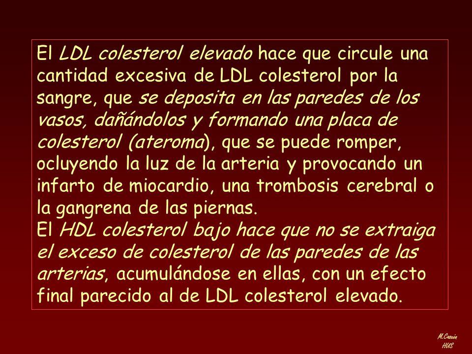 M.Cascón HUS El LDL colesterol elevado hace que circule una cantidad excesiva de LDL colesterol por la sangre, que se deposita en las paredes de los v