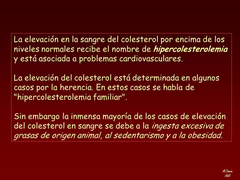 M.Cascón HUS La elevación en la sangre del colesterol por encima de los niveles normales recibe el nombre de hipercolesterolemia y está asociada a pro