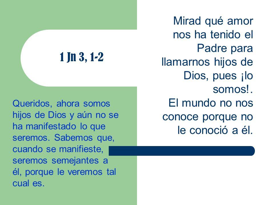 No estamos llamados a la vida terrena: En verdad, esa no es realidad «última», sino «penúltima»; es realidad sagrada, que se nos confía para que la custodiemos con sentido de responsabilidad y la llevemos a perfección en el amor y en el don de nosotros mismos a Dios y a los hermanos.