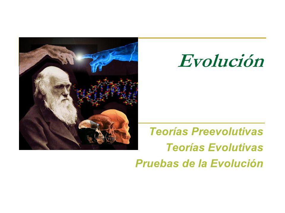 Evolución Teorías Preevolutivas Teorías Evolutivas Pruebas de la Evolución