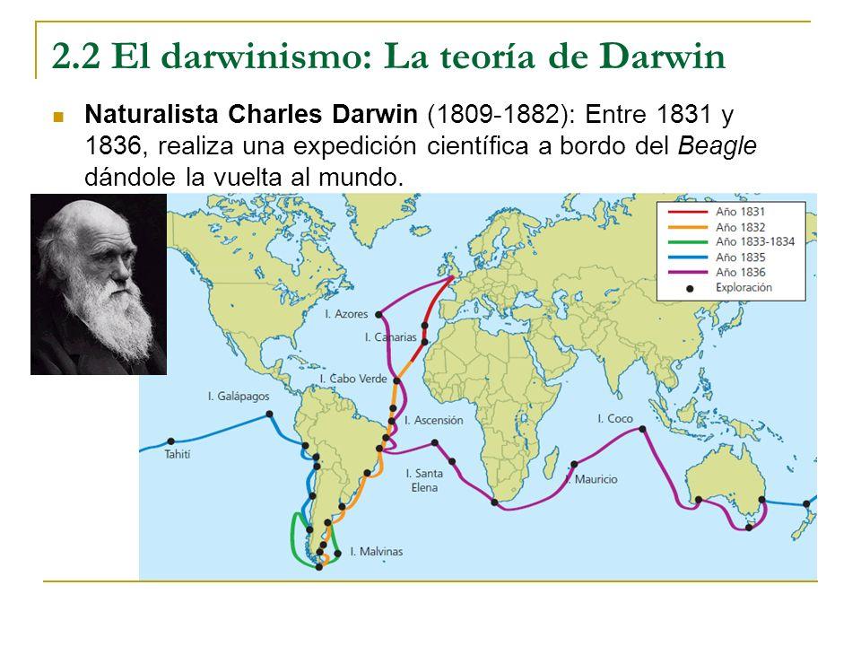 2.2 El darwinismo: La teoría de Darwin Naturalista Charles Darwin (1809-1882): Entre 1831 y 1836, realiza una expedición científica a bordo del Beagle