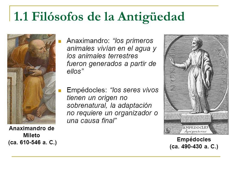 1.1 Filósofos de la Antigüedad Anaximandro: los primeros animales vivían en el agua y los animales terrestres fueron generados a partir de ellos Empéd