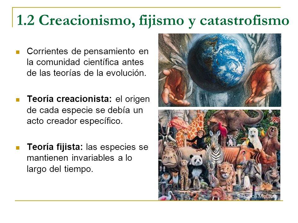1.2 Creacionismo, fijismo y catastrofismo Corrientes de pensamiento en la comunidad científica antes de las teorías de la evolución. Teoría creacionis