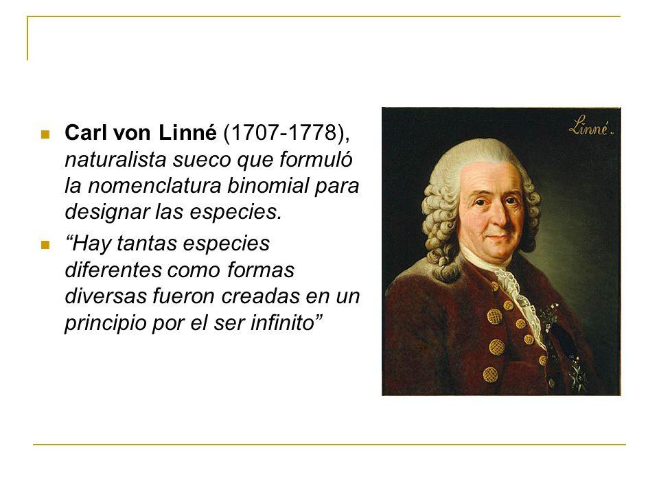 Carl von Linné (1707-1778), naturalista sueco que formuló la nomenclatura binomial para designar las especies. Hay tantas especies diferentes como for