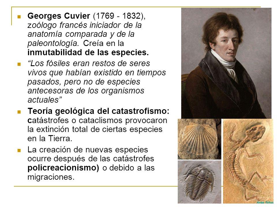 Georges Cuvier (1769 - 1832), zoólogo francés iniciador de la anatomía comparada y de la paleontología. Creía en la inmutabilidad de las especies. Los