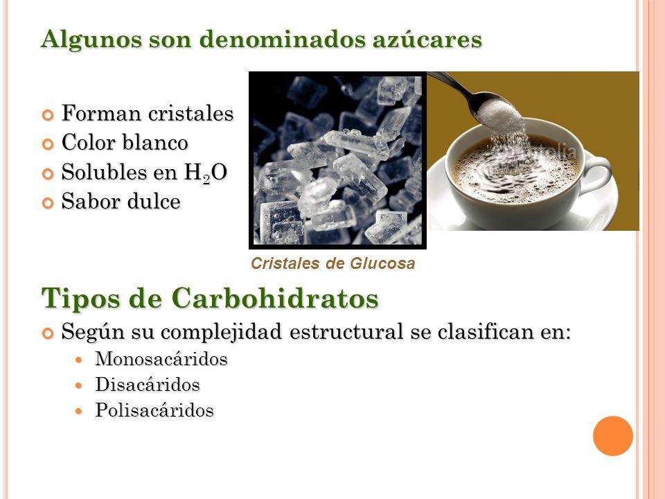 Algunos son denominados azúcares Forman cristales Forman cristales Color blanco Color blanco Solubles en H 2 O Solubles en H 2 O Sabor dulce Sabor dul