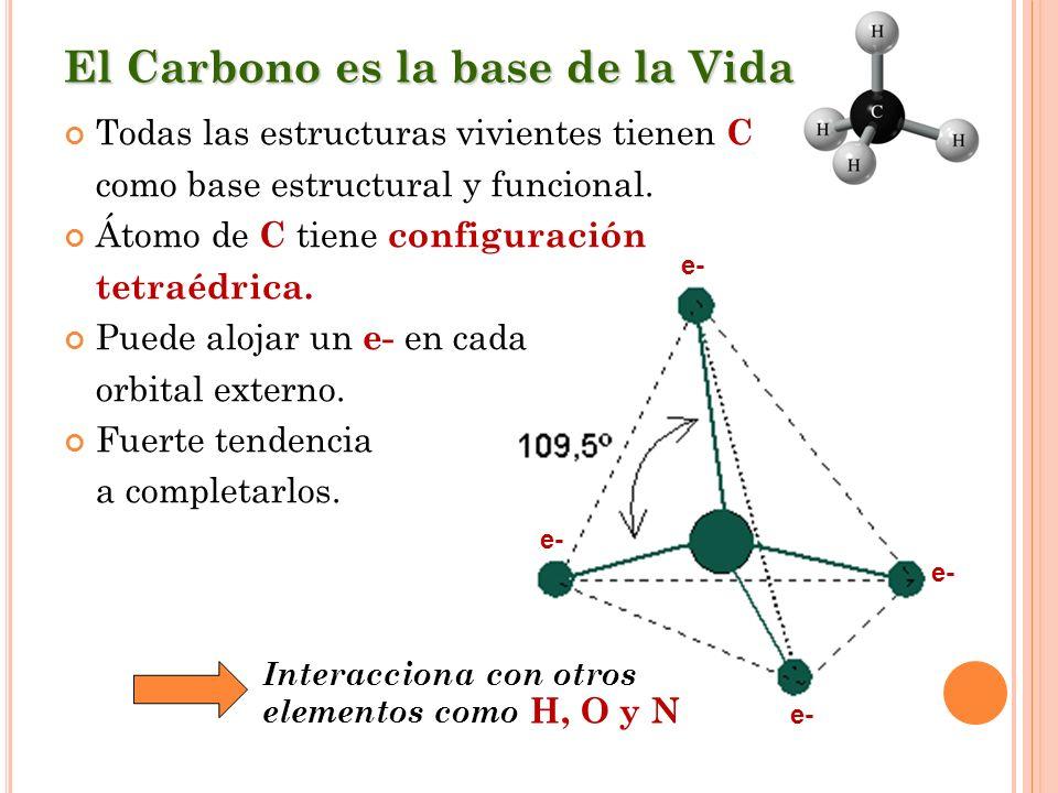 El Carbono es la base de la Vida Todas las estructuras vivientes tienen C como base estructural y funcional. Átomo de C tiene configuración tetraédric