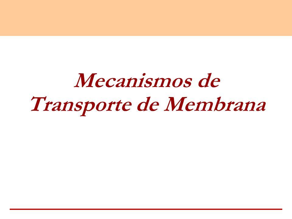 Mecanismos de Transporte de Membrana