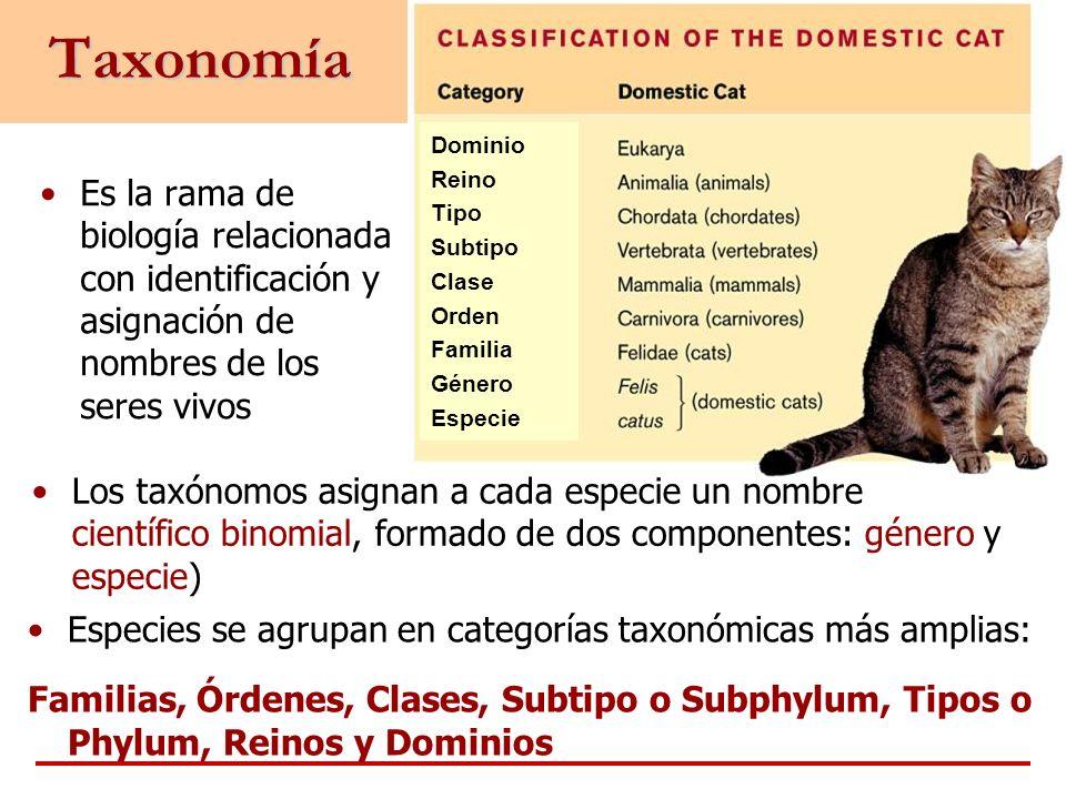 Taxonomía Dominio Reino Tipo Subtipo Clase Orden Familia Género Especie Es la rama de biología relacionada con identificación y asignación de nombres