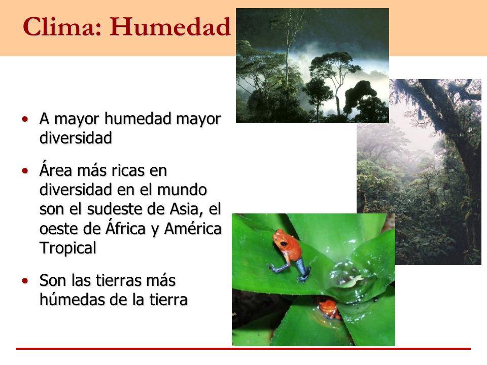 Clima: Humedad A mayor humedad mayor diversidadA mayor humedad mayor diversidad Área más ricas en diversidad en el mundo son el sudeste de Asia, el oe