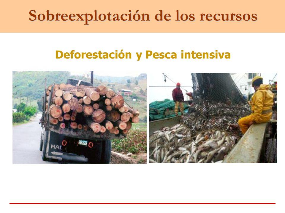 Sobreexplotación de los recursos Deforestación y Pesca intensiva