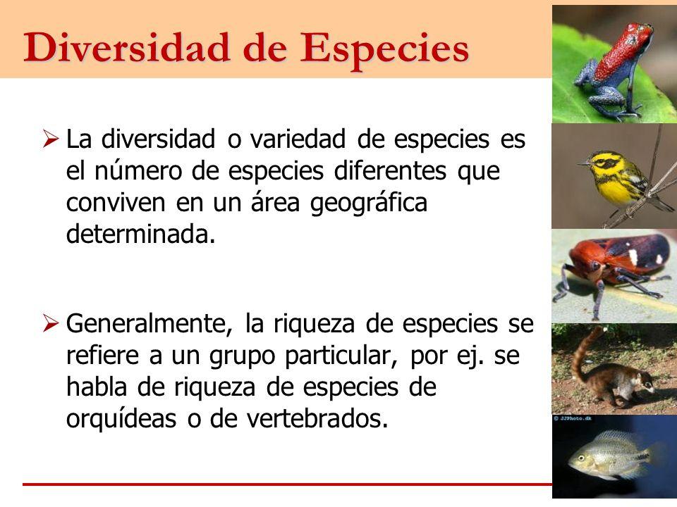 Diversidad de Especies La diversidad o variedad de especies es el número de especies diferentes que conviven en un área geográfica determinada. Genera