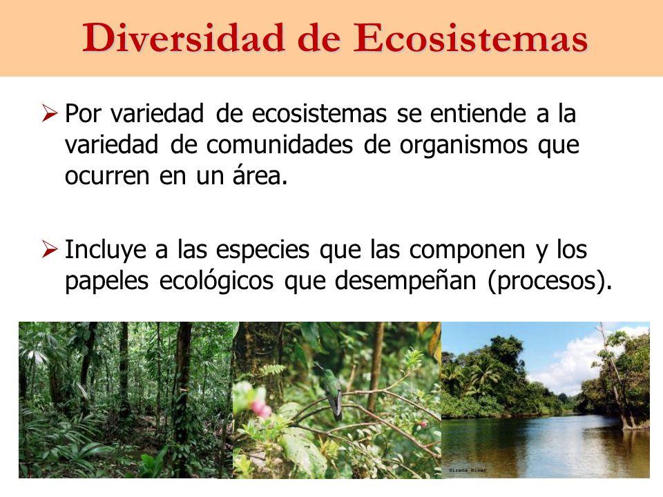 Diversidad de Ecosistemas Por variedad de ecosistemas se entiende a la variedad de comunidades de organismos que ocurren en un área. Incluye a las esp