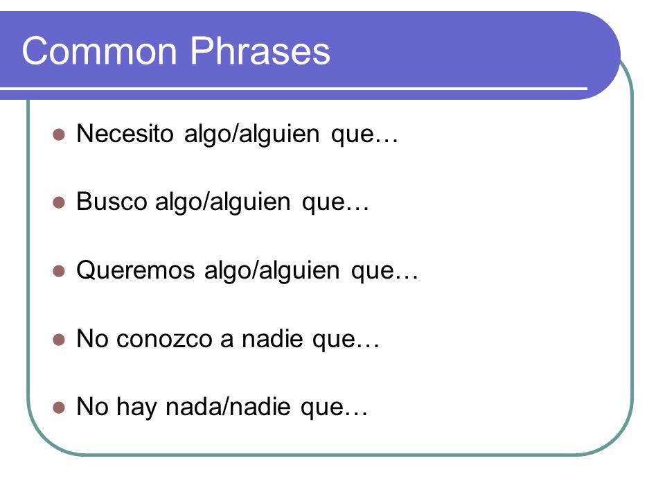Common Phrases Necesito algo/alguien que… Busco algo/alguien que… Queremos algo/alguien que… No conozco a nadie que… No hay nada/nadie que…
