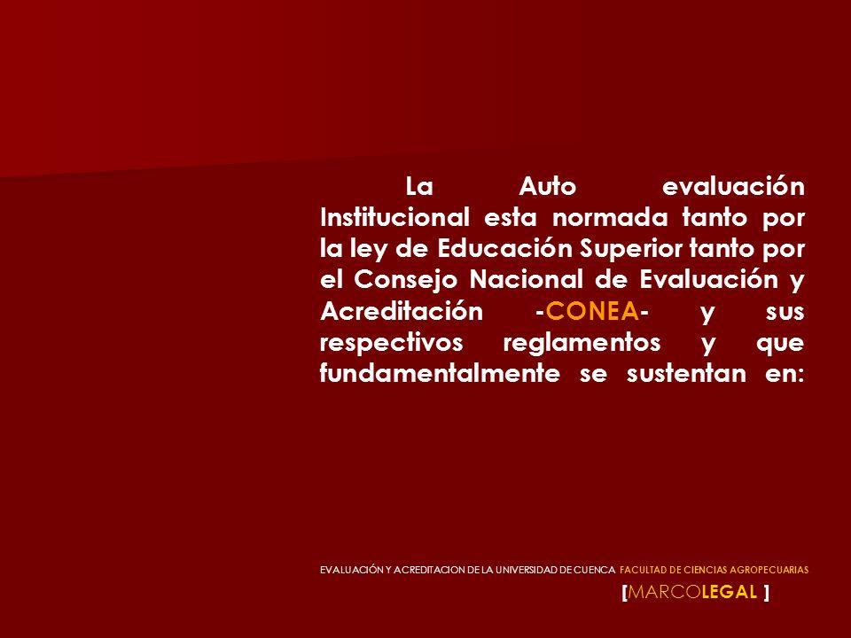 [ AUTOEVALUACIÓNY EVALUACIÓNINTERNA ] Todos estos procesos deben ser desarrollados por cada institución universitaria de acuerdo a su misión y visión que tenga en la formación educativa para aportar al desarrollo local, provincial, regional o nacional.