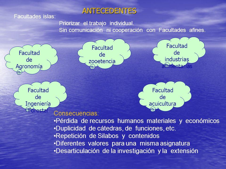 ANTECEDENTES Facultades islas: Priorizar el trabajo individual.