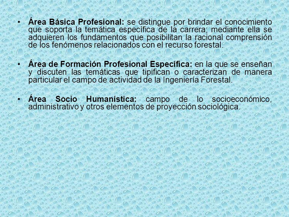 Área Básica Profesional: se distingue por brindar el conocimiento que soporta la temática específica de la carrera; mediante ella se adquieren los fun