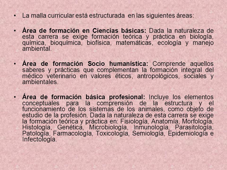 La malla curricular está estructurada en las siguientes áreas: Área de formación en Ciencias básicas: Dada la naturaleza de esta carrera se exige form