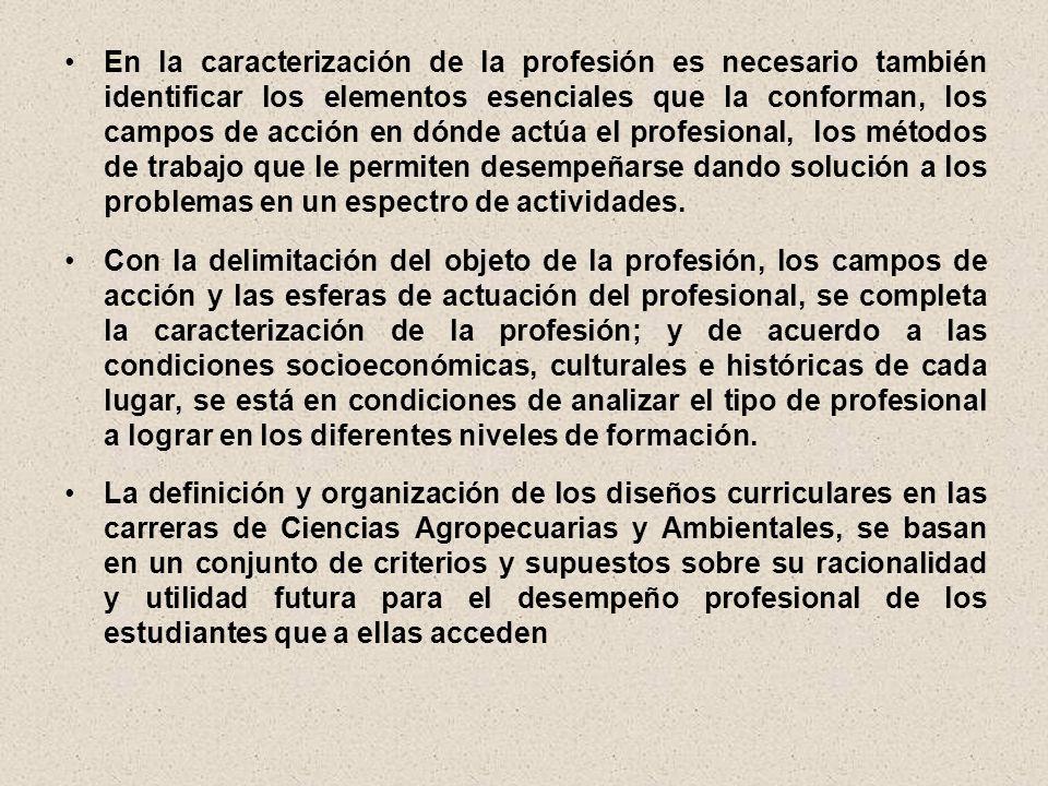 En la caracterización de la profesión es necesario también identificar los elementos esenciales que la conforman, los campos de acción en dónde actúa