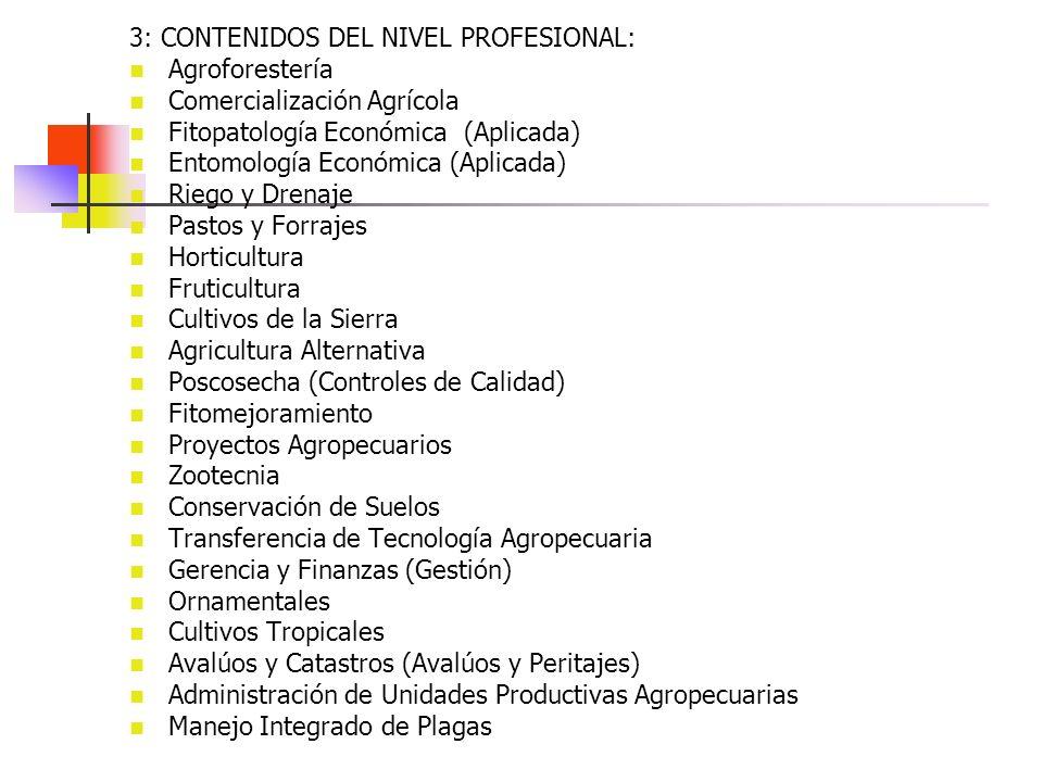 3: CONTENIDOS DEL NIVEL PROFESIONAL: Agroforestería Comercialización Agrícola Fitopatología Económica (Aplicada) Entomología Económica (Aplicada) Rieg