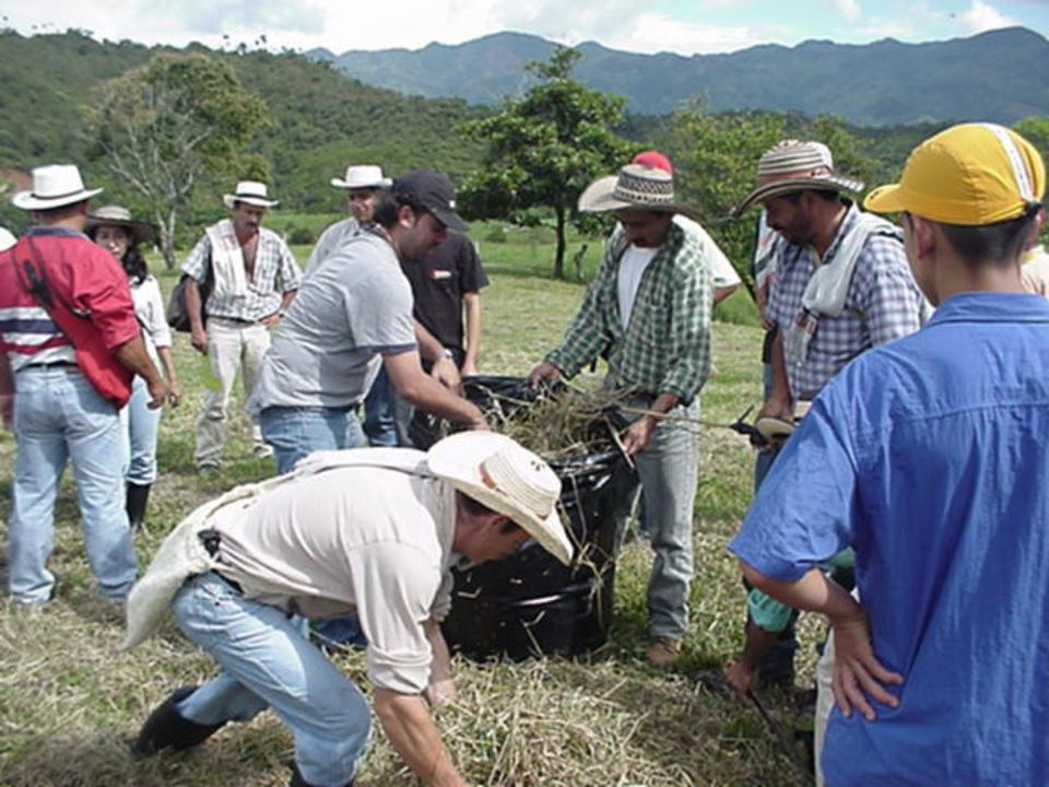 Conclusiones n El conocimiento de la realidad agraria viabiliza la pertinencia de los programas n La transferencia debe ser uno de los eslabones finales del ciclo de la investigación n La inserción institucional en el agro contribuye a transformar y a fortalecer los sistemas de producción