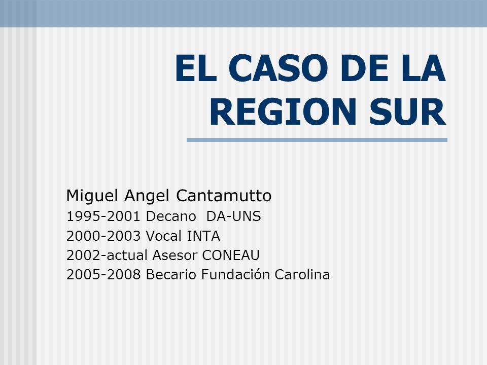 EL CASO DE LA REGION SUR Miguel Angel Cantamutto 1995-2001 Decano DA-UNS 2000-2003 Vocal INTA 2002-actual Asesor CONEAU 2005-2008 Becario Fundación Carolina