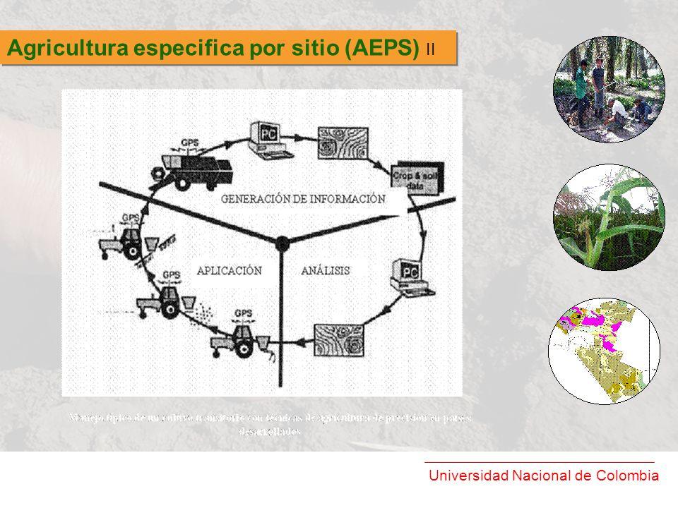 Universidad Nacional de Colombia Agricultura especifica por sitio (AEPS) II
