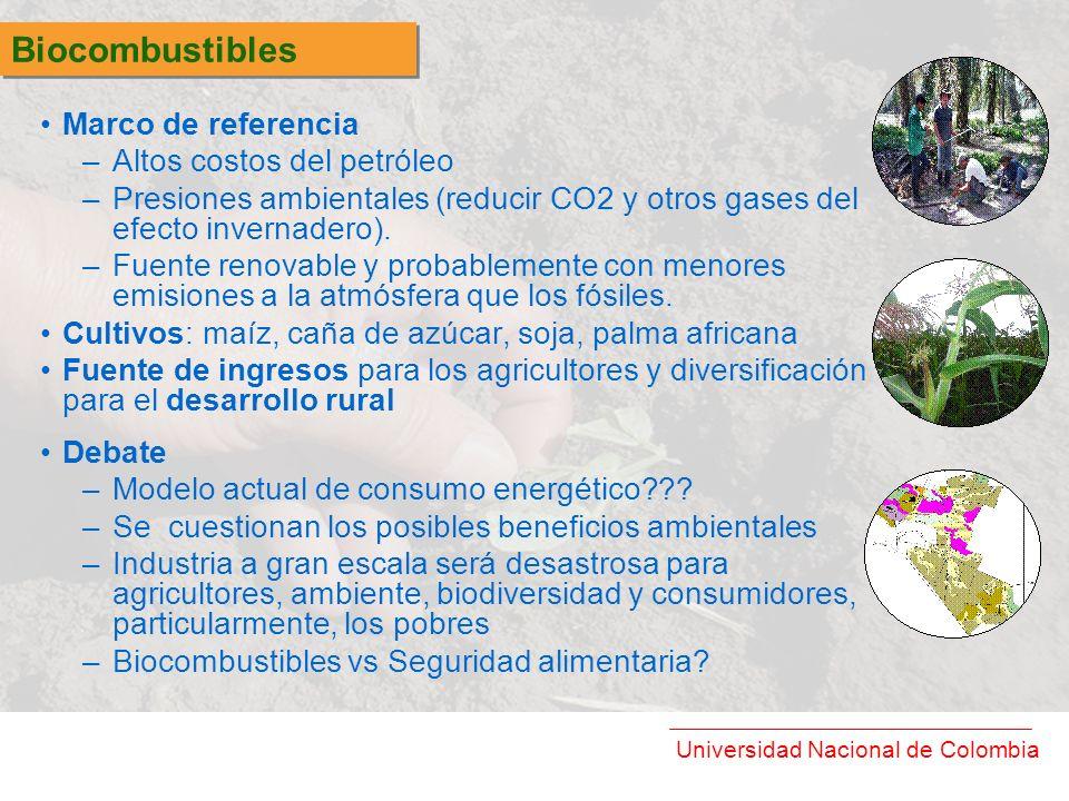 Universidad Nacional de Colombia Marco de referencia –Altos costos del petróleo –Presiones ambientales (reducir CO2 y otros gases del efecto invernade