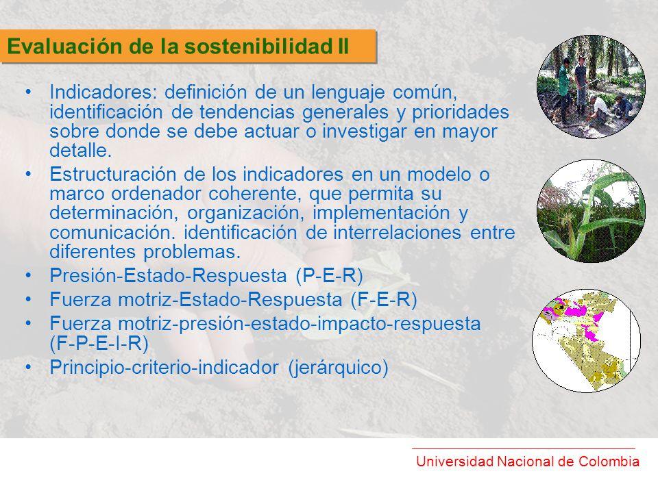 Universidad Nacional de Colombia Indicadores: definición de un lenguaje común, identificación de tendencias generales y prioridades sobre donde se deb