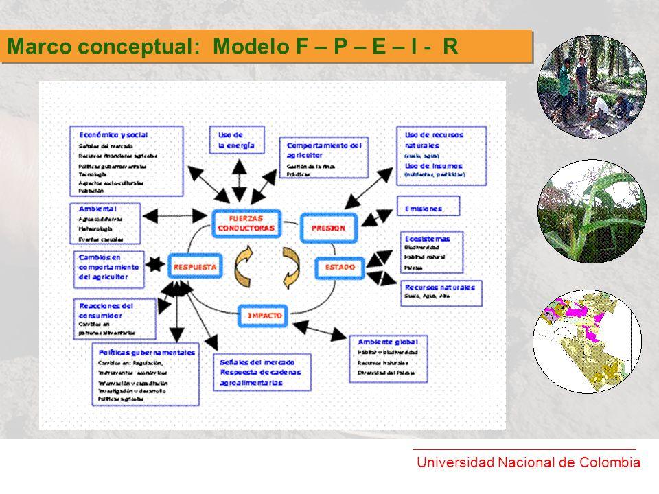 Universidad Nacional de Colombia Marco conceptual: Modelo F – P – E – I - R