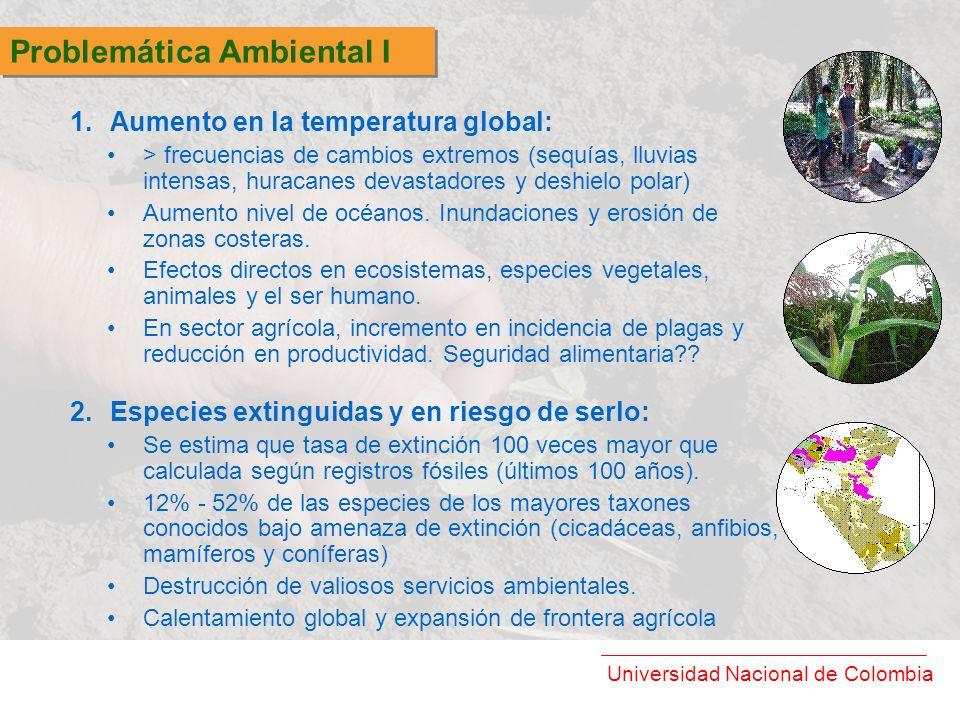 Universidad Nacional de Colombia Crecimiento de comercio de productos orgánicos y verdes, mercado de alto poder adquisitivo, precios más altos para productos diferenciados y certificados.