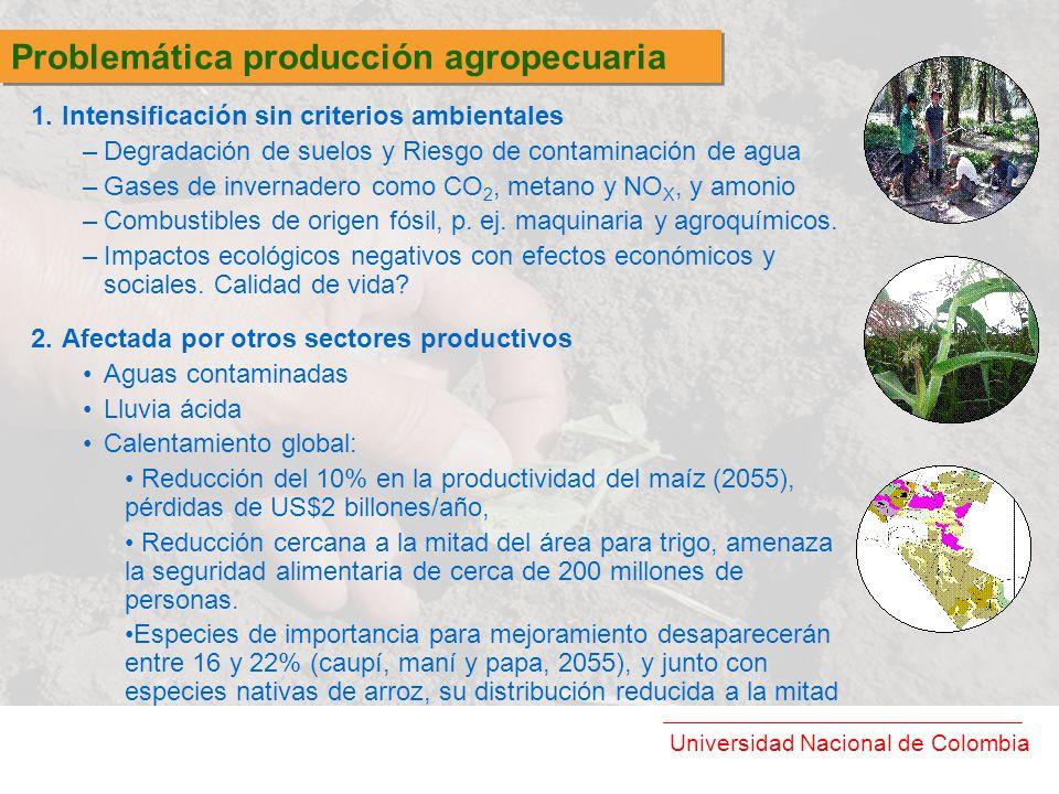 Universidad Nacional de Colombia 1.Intensificación sin criterios ambientales –Degradación de suelos y Riesgo de contaminación de agua –Gases de invern