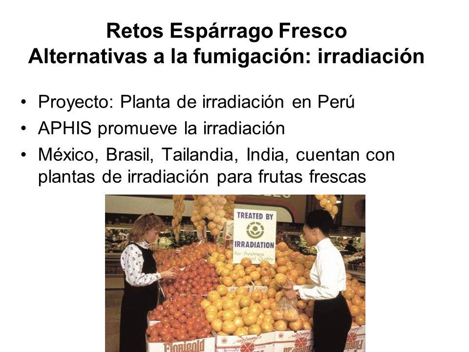 Retos Espárrago Fresco Alternativas a la fumigación: irradiación Proyecto: Planta de irradiación en Perú APHIS promueve la irradiación México, Brasil,