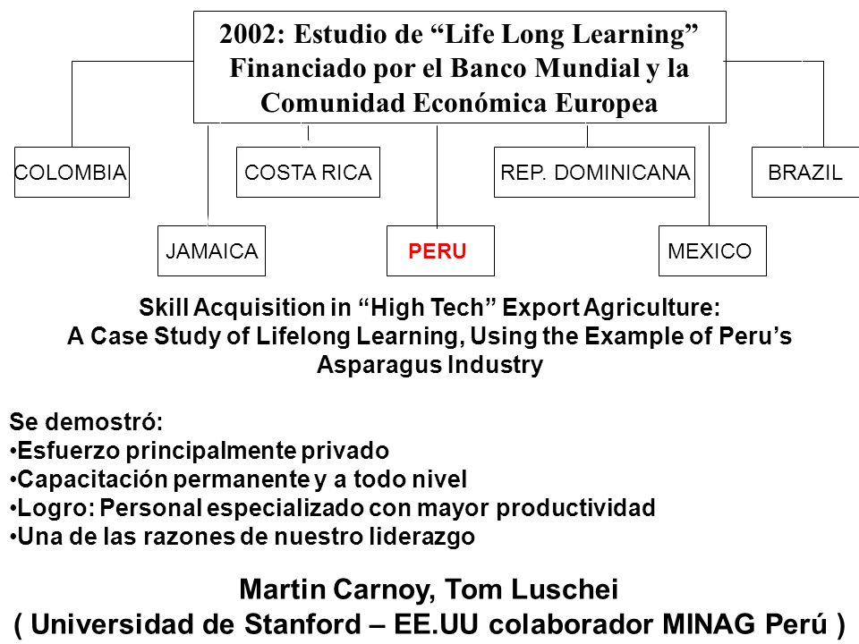 2002: Estudio de Life Long Learning Financiado por el Banco Mundial y la Comunidad Económica Europea PERU COLOMBIA REP. DOMINICANACOSTA RICA JAMAICAME