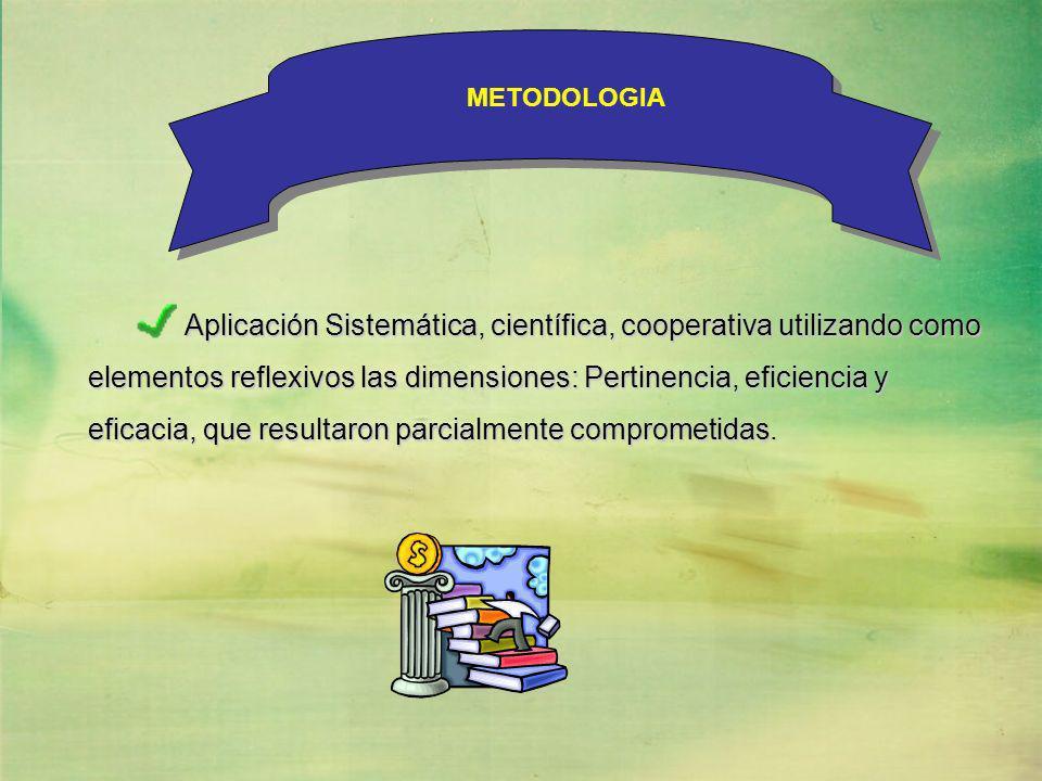 Aplicación Sistemática, científica, cooperativa utilizando como elementos reflexivos las dimensiones: Pertinencia, eficiencia y elementos reflexivos l
