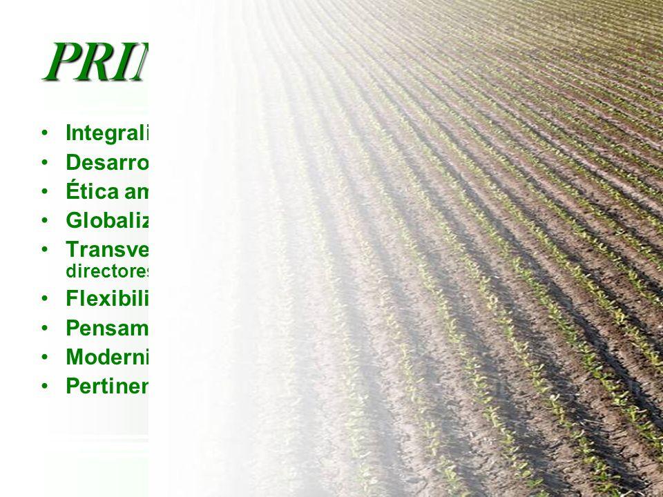Integralidad Desarrollo Rural Ética ambiental-Sostenibilidad Globalización y competitividad Transversalidad (ejes. proyectos, módulos, programas direc