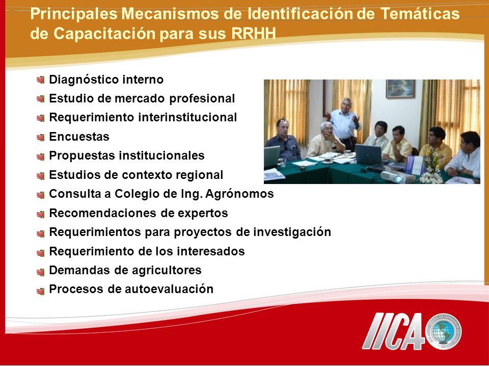Principales Mecanismos de Identificación de Temáticas de Capacitación para sus RRHH Diagnóstico interno Estudio de mercado profesional Requerimiento interinstitucional Encuestas Propuestas institucionales Estudios de contexto regional Consulta a Colegio de Ing.