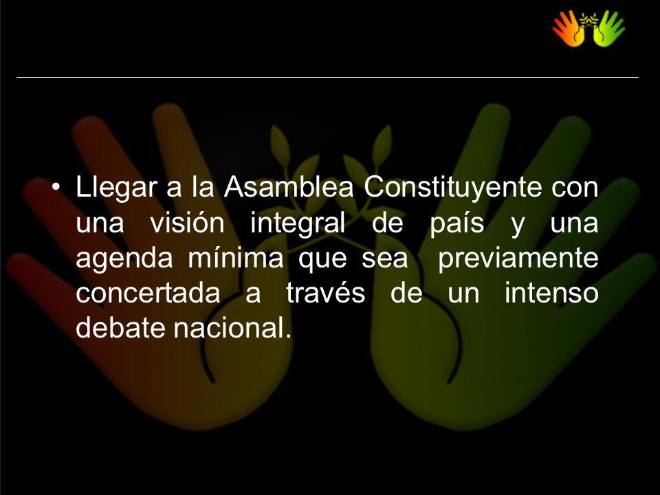 Llegar a la Asamblea Constituyente con una visión integral de país y una agenda mínima que sea previamente concertada a través de un intenso debate nacional.