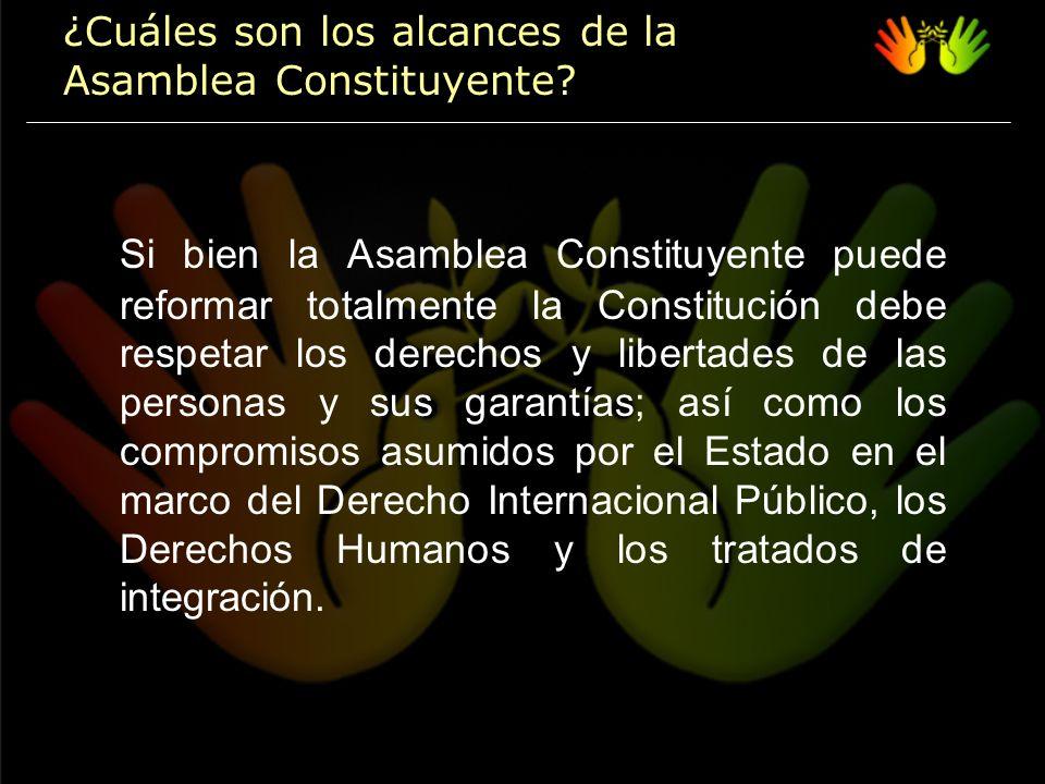 Si bien la Asamblea Constituyente puede reformar totalmente la Constitución debe respetar los derechos y libertades de las personas y sus garantías; así como los compromisos asumidos por el Estado en el marco del Derecho Internacional Público, los Derechos Humanos y los tratados de integración.