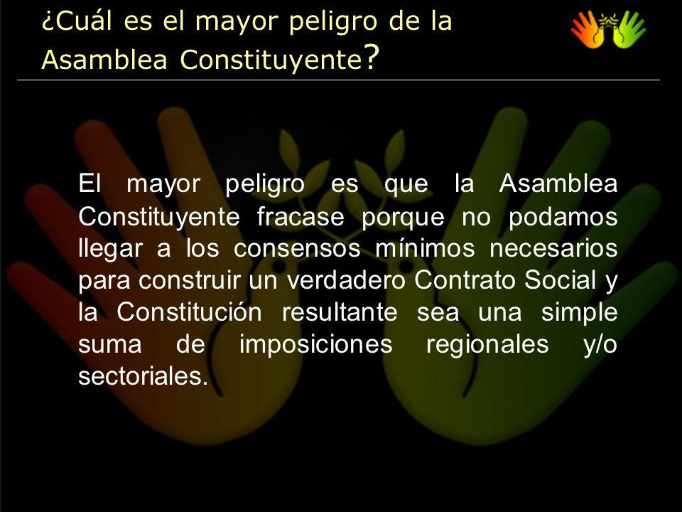 Una representación democrática que garantice que los representantes sean ciudadanos que lleguen a la Asamblea Constituyente con propuestas y no sólo con demandas y, por lo tanto, evite que busquen el interés de un grupo, sector, gremio o región, antes que el interés general de todos los bolivianos.