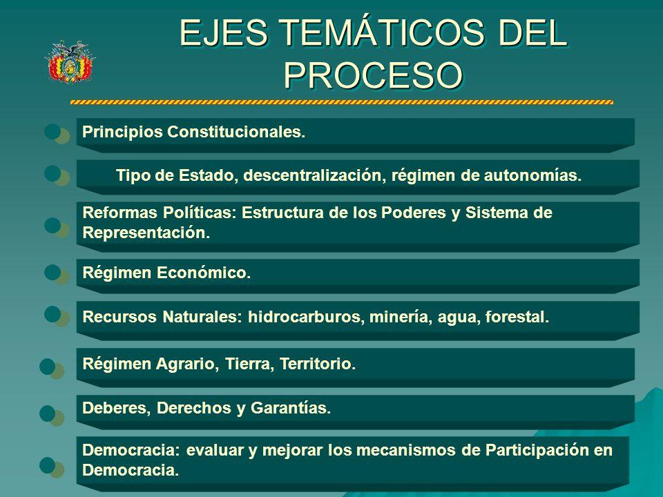 EJES TEMÁTICOS DEL PROCESO Principios Constitucionales.