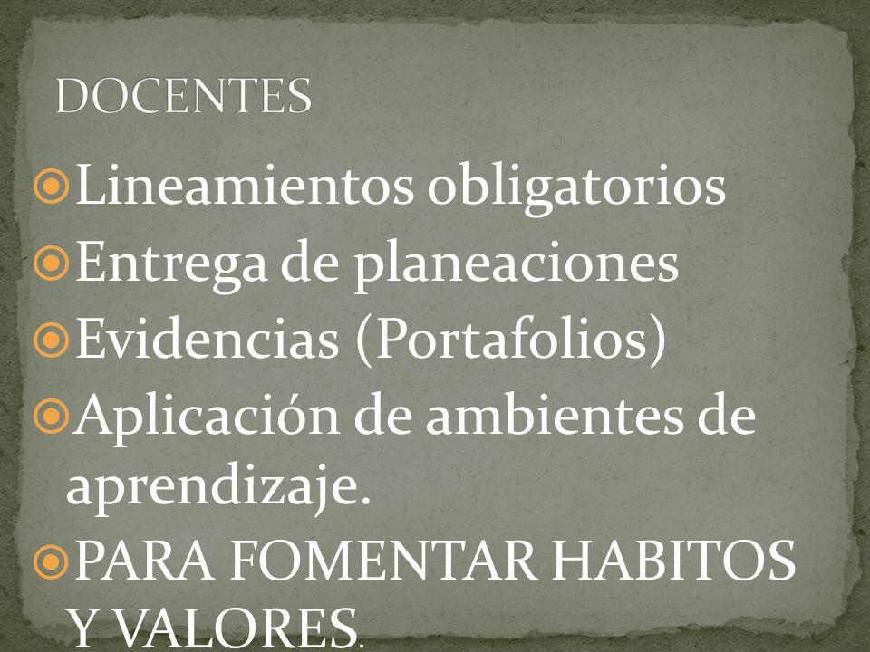Lineamientos obligatorios Entrega de planeaciones Evidencias (Portafolios) Aplicación de ambientes de aprendizaje. PARA FOMENTAR HABITOS Y VALORES.