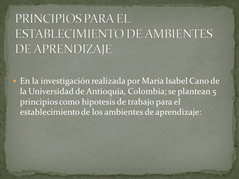 En la investigación realizada por María Isabel Cano de la Universidad de Antioquia, Colombia; se plantean 5 principios como hipotesis de trabajo para