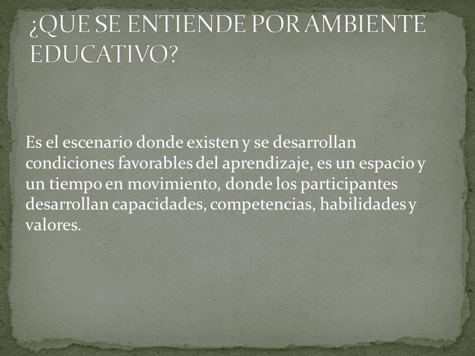 En la investigación realizada por María Isabel Cano de la Universidad de Antioquia, Colombia; se plantean 5 principios como hipotesis de trabajo para el establecimiento de los ambientes de aprendizaje: