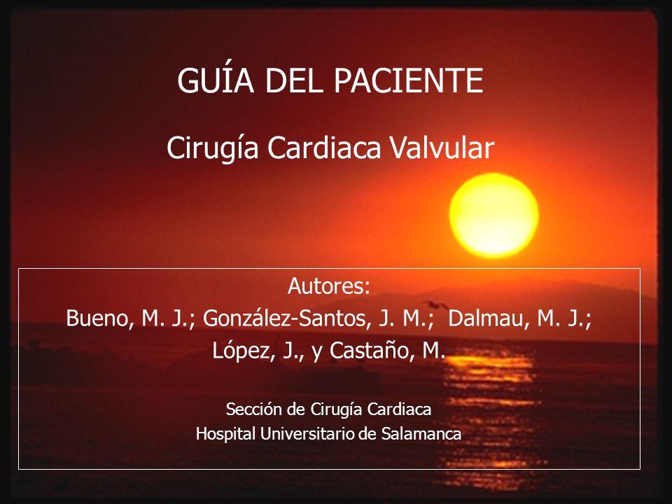 Autores: Bueno, M. J.; González-Santos, J. M.; Dalmau, M. J.; López, J., y Castaño, M. Sección de Cirugía Cardiaca Hospital Universitario de Salamanca