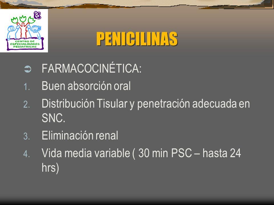 PENICILINAS ACTIVIDAD ANTIMICROBIANA: Anillo betalactamico+ anillo tiazolidínico+ una cadena de ácido 6-aminopenicilinico. MECANISMO DE ACCIÓN: Inhibe